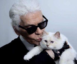 Choupette, Teman Setia Karl Lagerfeld, Mewarisi Harta £150 Juta